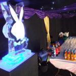 Playboy bunny ice luge
